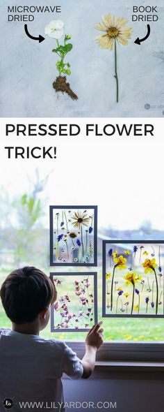 Make pressed flower SUN CATCHERS ART! Perfect for a mother's day gift idea or j… Make pressed flower SUN CATCHERS ART! Perfect for a mother's day gift idea or just flower art! It only takes 3 minutes to dry flowers this way! Drying flowers in a micr Cute Crafts, Crafts To Do, Creative Crafts, Crafts For Kids, Decor Crafts, Kids Diy, Creative Mother's Day Gifts, Diy Gifts For Kids, Dit Mothers Day Gifts