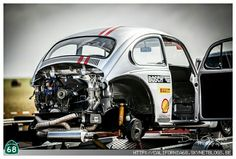 Good Herbie