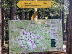 Freundlich, Adventure Awaits, Hiking Trails, Hiking, World, Pet Dogs, Nature