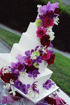purple_burgundy_rose