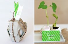 Want a favor your guests will remember for months?  Give them something to grow!  Every time they see the plant they'll be reminded of you and, more importantly, your event!