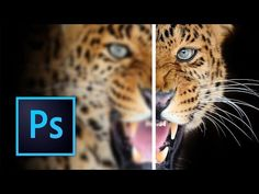How to Sharpen Images in Photoshop - YouTube