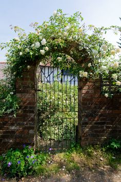 Wild Beauty - Sunlight through climbing roses over brick arch with iron gate in. - Wild Beauty – Sunlight through climbing roses over brick arch with iron gate in June. Garden Entrance, Garden Doors, Garden Gate, Garden Archway, Portal, Brick Arch, Brick Fence, Garden Steps, Fence Gate