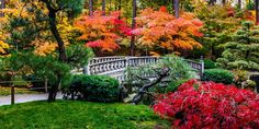 Manito Park by Keith D on 500px
