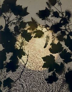 Susan Derges River Taw, moon, shadows camera-less photography Modern Photography, Artistic Photography, Fine Art Photography, Experimental Photography, Photography Ideas, Alternative Photography, A Level Art, Abstract Nature, Photomontage