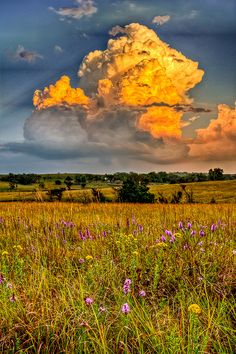 Flint Hills near Alma, Kansas  - by Orville Courtney