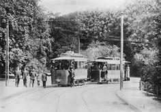 HANNOVER Herrenhausen * Erste elektrische Straßenbahn am Berggarten 1893. Germany, Street View, History, Hannover, Old Pictures, Historical Photos, Postcards, Deutsch
