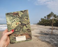 TRAVEL NOTEBOOK | JUNGLE | COLOMBIA | GRASS AND CANVAS