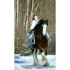 Shirehorse Fehn Emma. I'm wearing a costume inspired by the Lord of the rings. This is fun 😄
