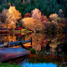 2048x2048 Wallpaper boat, coast, bottom, autumn, lake, surface, trees, wood, reflection, colors, brightly, light