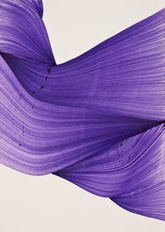 Pablo Bicasso? The global masters of ballpoint art – in pictures