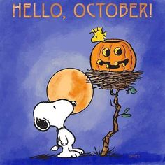 Snoopy and Woodstock Snoopy Halloween, Halloween Fun, Snoopy Christmas, Halloween Quotes, Halloween Cartoons, Halloween Pumpkins, Snoopy Und Woodstock, Snoopy Love, Snoopy Images