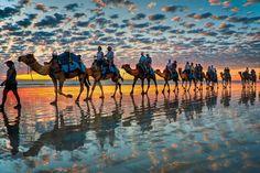 @Erin Dahl-Clancy ... this is a caravan of our people...