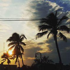 #UnaPeregrinaciónPara estos magníficos atardeceres en #Veracruz  #mexico  #travel #palms #picoftheday  #sunset #sun #friday #weekend #photo #mexicocolor  #whpthelittlethings #beautiful