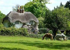 "earthlydelightz: "" Beehive Cottage, Swan Green, Lyndhurst, England """