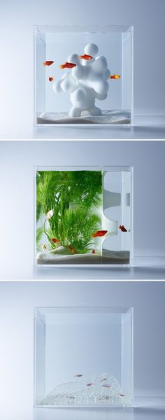Minimalist Aquariums Filled With 3D Printed Flora by Designer Haruka Misawa #3dprinting