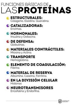Funciones de las proteínas – Repositorio de Objetos de Aprendizaje UG Biology Lessons, Science Biology, Science Facts, Medicine Notes, Medicine Student, Med Student, Student Studying, Clara Berry, Medical Anatomy