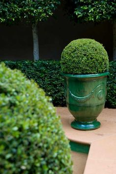 Love the giant urns with manicured hedges.green on green.