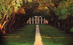 i want a front walkway like this...