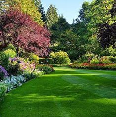 All about backyard landscaping ideas at an affordable price, small, layout, terrace, easy to maintai Acreage Landscaping, Large Backyard Landscaping, Backyard Garden Design, Garden Landscape Design, Landscaping Ideas, Nice Backyard, Pergola Patio, Pergola Plans, Backyard Ideas