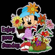 Super sunday wishes| sunday quotes wishes| sunday good morning wishes| sunday quotes, photo, gif, photography, message, sms, festival wishes image| #sunday #sunday_wishes Sunday Gif, Weekend Gif, Happy Sunday, Sunday Quotes, Sunday Wishes Images, Happy Weekend Images, Good Morning Greetings, Good Morning Wishes, Weekender