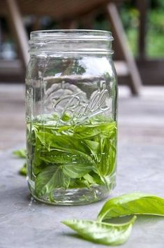 This is the best way to preserve fresh summer herbs like basil.