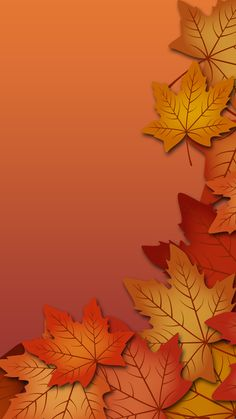 Autumn leaves Mobile Wallpaper 2499 – My Wallpapers Page Flor Iphone Wallpaper, Orange Wallpaper, Cellphone Wallpaper, Colorful Wallpaper, Mobile Wallpaper, Wallpaper Backgrounds, Thanksgiving Wallpaper, Holiday Wallpaper, Fall Wallpaper