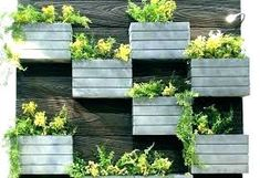 Image result for living wall planter