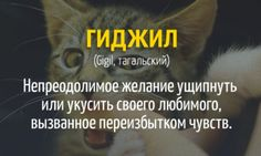 20 слов, которых нет в русском языке Weird Words, New Words, Cool Words, Russian Quotes, Dictionary Definitions, Funny Phrases, English Words, Vocabulary Words, Meaningful Words