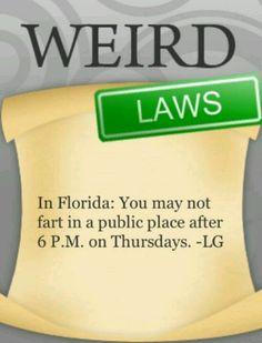 That explains a lot Wtf Fun Facts, True Facts, Funny Facts, Funny Memes, Crazy Facts, Random Facts, Random Stuff, Weird Laws, Weird But True