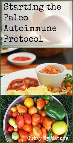 Starting the Paleo Autoimmune Protocol Gutsy By Nature - Diet Plan Paleo Autoinmune, Paleo Diet Plan, Aip Diet, How To Eat Paleo, Gaps Diet Recipes, Paleo Autoimmune Protocol, Zucchini Puffer, Nutrition, Comfort Food