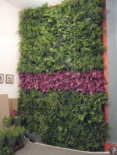 We've told you about Patrick Blanc's vertical gardens for the home