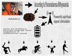 How Rudraksha works