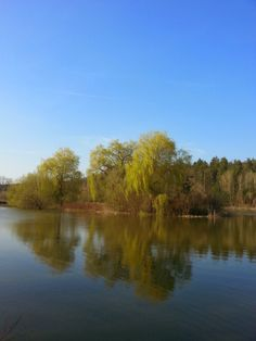 Der hinterste der Rotenturmer Teiche. Mit der ersten Frühlingssonne kommt auch das erste Grün - das war ein sehr genussvoller Sonntagsspaziergang!