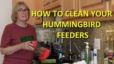 How to Clean Your Hummingbird Feeders - YouTube Humming Bird Feeders, Bird Toys, Hummingbirds, Step By Step Instructions, Amazing Gardens, Cleaning Hacks, Butterflies, Garden Fun, Gardening