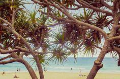 Queensland: fulfill your nature loving soul PART II Personal Portfolio, Australia, Child, Flower, Outdoor Decor, Nature, Boys, Naturaleza, Kid
