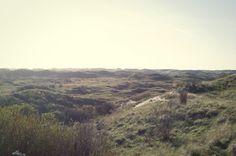 Herfstlandschap in het duin / Autumn in the dunes Photo by Jorinde Reijnierse The Dunes, Strand, Autumn, Mountains, Nature, Photography, Travel, Naturaleza, Photograph