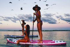 Stand up paddling with friends