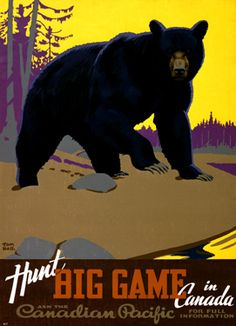 Hunt Big Game in Canada. This vintage travel poster from the Canadian Pacific Railway shows a black bear in the wild. Illustrated by Tom Hall, circa Canadian Pacific Railway, Canadian Travel, Canadian Art, Canadian Culture, Game Poster, Poster Wall, Posters Canada, Le Castor, Bear Hunting