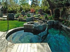 Residential Freeform natural swimming pool by master pools guild.