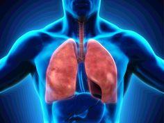 Каждая затяжка сигаретой, которую вы делаете, повреждает органы вашей дыхательной системой. Вы...