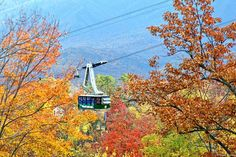 Ober Gatlinburg aerial tramway, from our blog post - Fall Events 2017: Fun in the Smoky Mountains