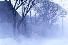 [F]地吹雪。横殴りの風で真っ白になります。