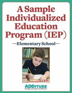 An Individualized Education Program is just that: individual. But there's plenty to learn from those who have already walked the IEP road. Take a look at this sample to help you prepare an effective IEP for your child.