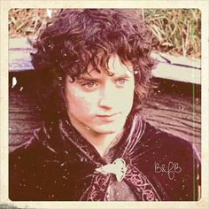 From the Bilbo and Frodo Baggins fanpage on Facebook. // (...oh. I forgot he was cute. SG)