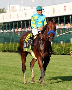 American Pharoah Kentucky Derby Chad B. Harmon