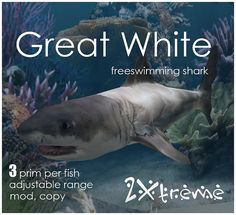great white by :: 2Xtreme ::