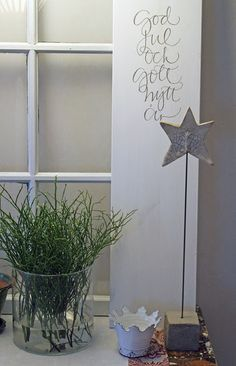 Original pin: star on concrete,....but look at that plant. I need that its gorg!
