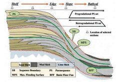Figure 1: Conceptual diagram illustrates the possible facies distribution along a cross section extending from the inner shelf to the bathyal environments.
