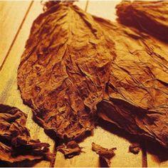 Hangsen Camel Menthol (tobacco flavor) PG e-liquid (10 ml)